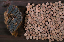 Cork tree. Of a material made of cork for wine and other containers Stock Photography