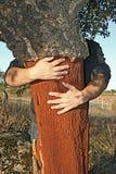 Cork van de holding boom Stock Foto
