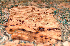 Cork wallpaper with green stains Stock Photos
