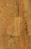 Cork wallpaper texture Stock Image