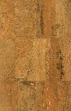 Cork wallpaper texture stock image