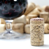 Cork from wine. Against the glass Stock Photography