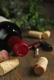 Cork wine and bottle Royalty Free Stock Photos