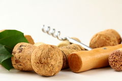 Cork from wine and a corkscrew Stock Image