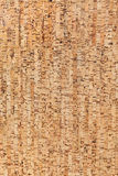 Corkboard texture or background Royalty Free Stock Photos