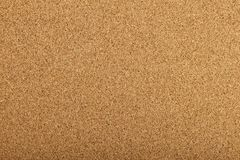 Corkboard texture with a fine grain Royalty Free Stock Image
