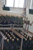 Corking Шампани Стоковое фото RF