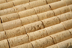 Corks!. Multiple corks on production line, 30 degree view Stock Photography