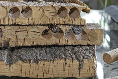 Free Corks At The Winery Stock Photos - 45750143