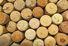 Corks from wine Royalty Free Stock Image