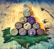 Corks wine with grape leaves Royalty Free Stock Photography