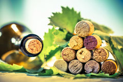 Corks wine with grape leaves Royalty Free Stock Image