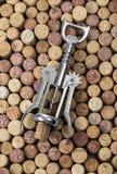 corkscrew Fotografia Stock Libera da Diritti