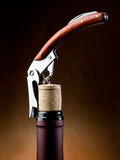 Corkscrew with bottle  Royalty Free Stock Photo