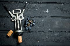 Corkscrew with a branch of grapes stock photos