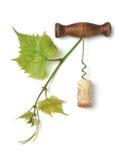 Corkscrew and cork Royalty Free Stock Photos