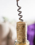 Corkscrew and cork Stock Photo