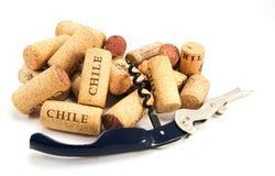 Corkscrew e diversos cortiça do vinho no branco fotos de stock royalty free