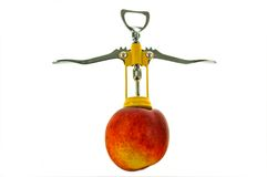 Corkscrew in a peach. Seems to be a little man Stock Image