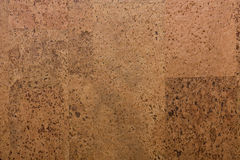 Corkwood background. The texture of corkwood background Royalty Free Stock Photos