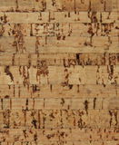 Corkwood background. Surface of a corkwood tile closeup texture Royalty Free Stock Photo