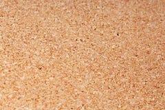Corkwood texture pattern closeup photo. Corkwood background Stock Images