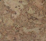 Corkwoodbakgrund Royaltyfria Bilder