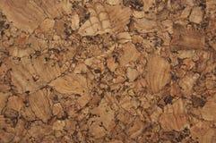 Corkwoodbeschaffenheit Lizenzfreie Stockbilder
