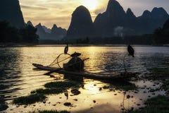 Cormant rybak w li rzece Fotografia Royalty Free
