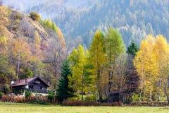 CORMAYEUR, ITALY/EUROPE 27 DE OCTUBRE: El mostrar de la escena del otoño alpino Imagenes de archivo