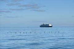 Cormorões e navio de cruzeiros do cabo Imagem de Stock Royalty Free