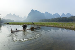 Cormorant, fish man and Li River scenery sight with fog in sprin Stock Photography