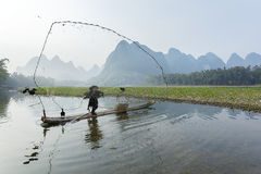 Cormorant, fish man and Li River scenery sight with fog in sprin Stock Image