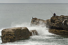 Cormorant and Fisherman Stock Images