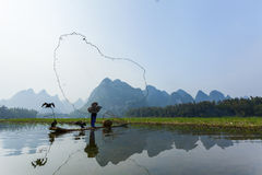 Cormorant, homme de poissons et vue de paysage de Li River avec le brouillard dans le sprin Photographie stock