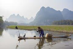 Cormorant, homme de poissons et vue de paysage de Li River avec le brouillard dans le sprin Photos stock