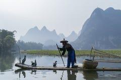 Cormorant, homme de poissons et vue de paysage de Li River avec le brouillard dans le sprin Image stock