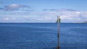 Cormorant watchtower royalty free stock photo
