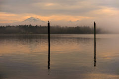 Cormorants And Mt. Baker Royalty Free Stock Images
