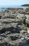 Cormorants basking on the rocks Royalty Free Stock Photos