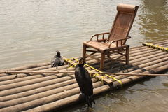 Cormorants fishing on bamboo raft. Grand Cormorants fishing on bamboo raft - Traditional way of fishing in China Royalty Free Stock Photo