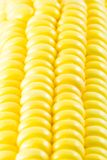 Corn. Delicious corn close-up for background Stock Photo