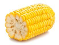 Free Corn Royalty Free Stock Image - 123566366