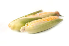 Corn. Isolated on white background royalty free stock photography