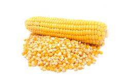 Free Corn Royalty Free Stock Image - 16348226