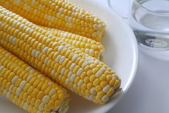 Corn. Maize on a plate Stock Photo