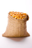 Corn. In burlap sack against background Royalty Free Stock Image