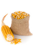Corn. In small burlap sack Royalty Free Stock Photos
