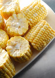 Corn. Many cut maize corn on dish Stock Photography