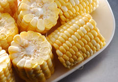 Corn. Uncook maize corn on a dish Stock Photos